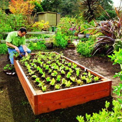 Raised Garden Beds Design design of raised garden beds witching ideas of raised garden bed plans excited design of Raised Garden Beds Plans