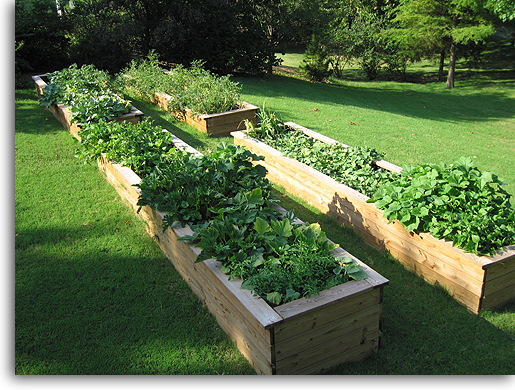 Raised garden beds plans ideas on the way to save for Garden bed plans