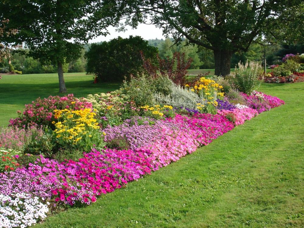 flower garden plan